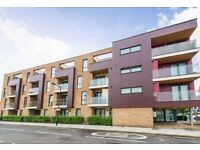 *1bedroom flat * Tower Hamlets* part DSS welcome with the proof of sufficient income