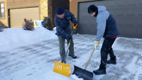 Do you need 2 strong men to shovel for you??