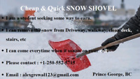 Cheap($30-$90) and quick snow removal service and maintenance