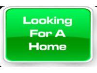 Needed urgently 4-5 bedroom house