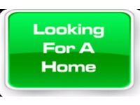 Looking for a 1 or 2 bedroom flat or house to rent within the Leighton Buzzard Area