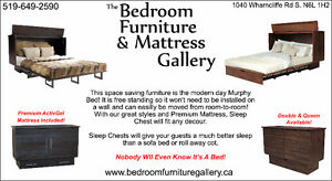 Sleep Chest / Murphy Bed / Cabinet Bed