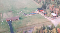 Hand Crafted Log Home Reduced Sitting On 95 Acres