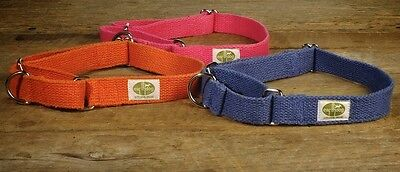 Earthdog Martingale Hemp Dog Collar in solid Colors