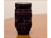 Canon 24-70 L lens