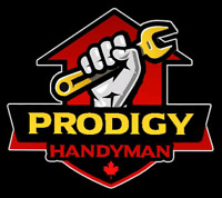 HANDYMAN SERVICES:  LOW PRICES - (647) 770-7670