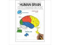 The Human Brain Coloring Book. New and unused