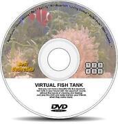 Fish Tank DVD