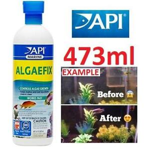 NEW API ALGAE CONTROL SOLUTION 387D 223010023 ALFAEFIX 16ox BOTTLE FISH PET AQUARIUM CLEANING