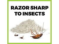 Organic Flea Control for Cats or Dogs - Diatomaceous Earth (food grade)