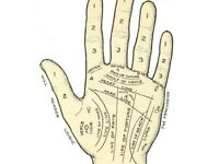 Free Palmistry Readings