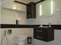 builder available: painting, tiling, bathroom fitting