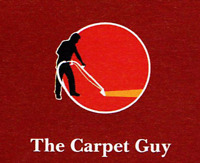 Carpet and Upholstery  Cleaning plus more