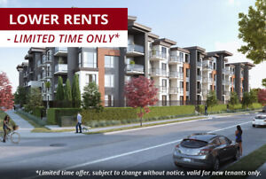 1 Bdrm + Den available at 5393 201 Street, Langley