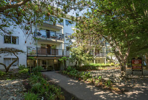 1 Bdrm available at 443 Superior Street, Victoria