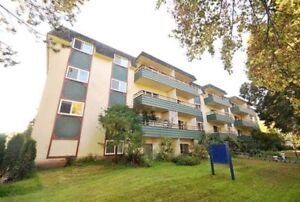 Bachelor available at 955 Humboldt Street, Victoria