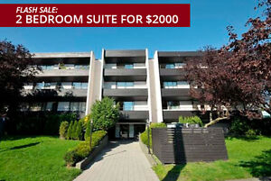 Bachelor available at 1204 Yates Street, Victoria