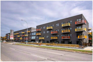 Penthouse Condo for Rent - Close to U of M & Pembina Hwy