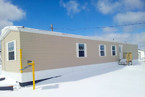 Brand new 3 bed/2 bath mini home for rent in Saint John
