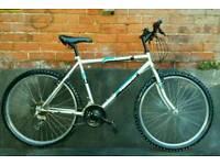 Unisex lightweight bike