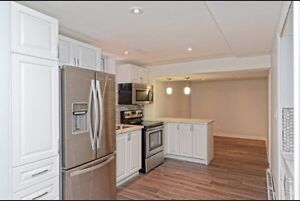 1 bdr basement apartment for rent with separate side entrance