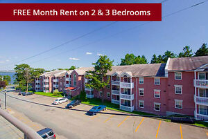 Jr. 1 Bdrm available at 40 Charlotte Lane, Halifax
