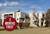 1 Bdrm available at 135 Lynnview Road SE, Calgary
