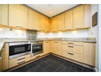 Fantastic 2 Bed Apartment in Canary Wharf - WILL GO