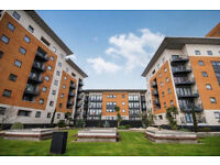 Large One bedroom apartment in stylish building also available to PART DSS and families too