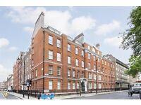 Studio flat in Albany House, Judd Street, King's Cross WC1H