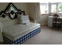 1 bed flat in park royal