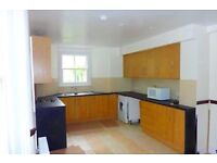 Spacious under refurbishment 4/5 bedroom house with lounge and back garden 7 min from station