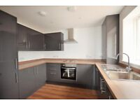 Pet friendly 3 Bed Semi detached House with garden and allocated off road parking