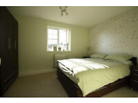 1 double room to rent in a 3 bedroom flat good view near Lakeside
