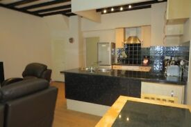 1 bedroom Flat to rent and share with myself landlord