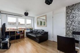 HUGE 1 bed flat in mile End FULLY FURNISHED only 5 min walk to mile end/bow Underground