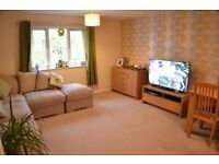 Great Double room in 2 bed apartment to rent