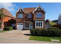 4-5 bedroom house/bungalow for rent/let wanted