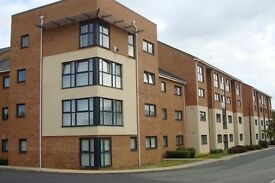 AVAILABLE SEPTEMBER- 2 BED Ground floor apartment - Lowbridge court, Garston L19