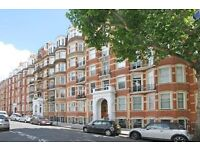 MASSIVE TO BEDROOM TWO BATHROOM APARTMENT IN KENSINGTON *** AVAILABLE NOW ***