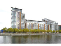 Large 1 bed in Brand New Building in Canning Town, considering DSS, available in September