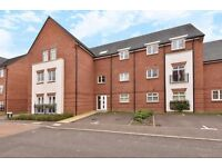 1 bed open plan flat, new build, modern, ground floor in swap for 2-3 bed house.