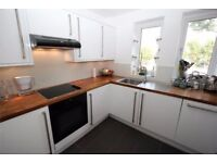 *New beautiful one Bedroom* next to Denmark Hill