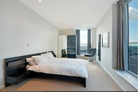 Penthouse Two Bed In Canary Wharf E14 Fantastsic Views