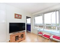 ***** Gorgeous Light & Airy 1 Bedroom Flat - Separate Kitchen *****