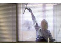 Cleaner seeking work