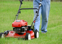 We cut grass very low prices