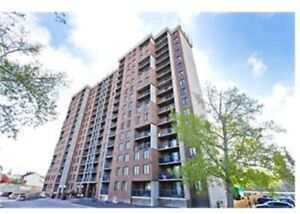 2 bedroom apartment in Dalhousie available now