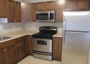 LARGE 2 BEDROOM APARTMENT 125 JOYCE AVE. $865 AIR CONDITIONING
