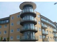 BEAUTIFUL 2 BEDROOM FLAT TO RENT IN FELTHAM DONT MISS OUT ON IT!!!
